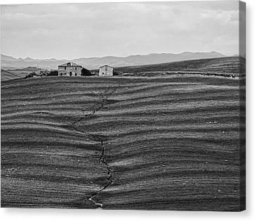 Farm Sienna Canvas Print by Hugh Smith