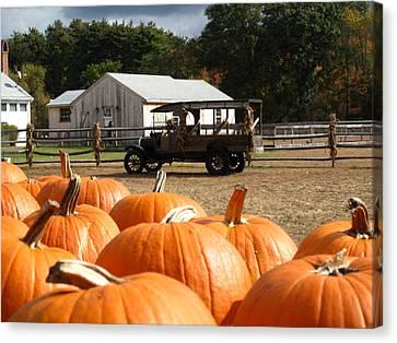 Farm Stand Pumpkins Canvas Print by Barbara McDevitt