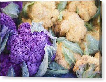 Farmers Market Purple Cauliflower Canvas Print by Carol Leigh
