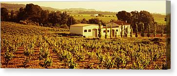 Farmhouses In A Vineyard, Penedes Canvas Print by Panoramic Images