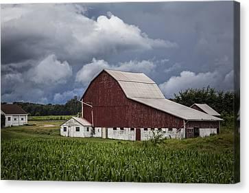 Farming Canvas Print by Debra and Dave Vanderlaan