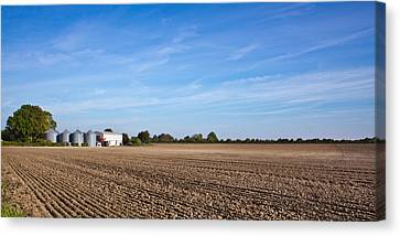Farming Landscape Canvas Print by Tom Gowanlock