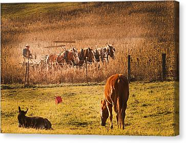 Farming  Modes Of Transportation Canvas Print by Randall Branham