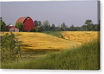 Farmlands 1 Canvas Print by Barbara Smith