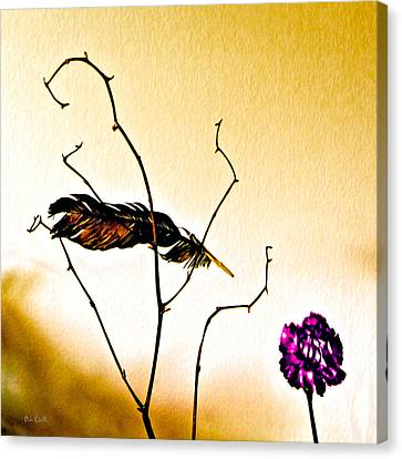Feather And Carnation Canvas Print by Bob Orsillo