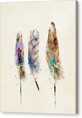 Feathers Canvas Print by Bri B