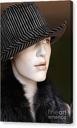 Fedora And Fur Canvas Print by Sophie Vigneault