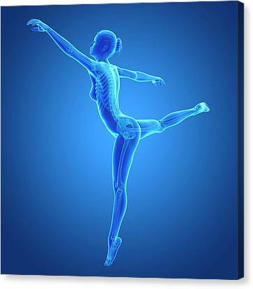 Female Dancer Canvas Print by Sebastian Kaulitzki