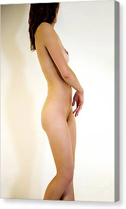 Female Nude Study Canvas Print by Julia Hiebaum