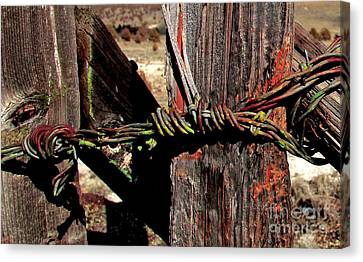 Fence Closure Harney County Oregon Canvas Print by Michele AnneLouise Cohen