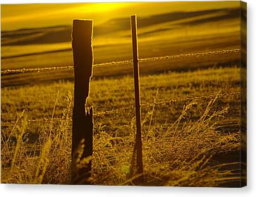 Fence Post In The Morning Light Canvas Print by Jeff Swan