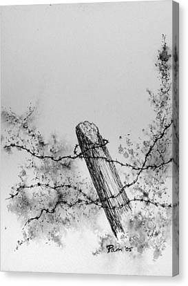 Fence With Barbed Wire Canvas Print by Pam Belcher