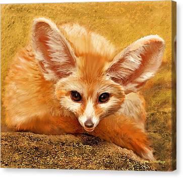 Fennec Fox Canvas Print by Jane Schnetlage
