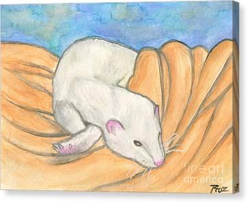 Ferret's Favorite Blanket Canvas Print by Roz Abellera Art