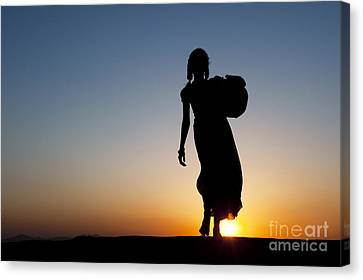 Fetching Water Canvas Print by Tim Gainey