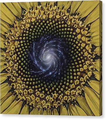 Fibonaccis Mandela V.2 Canvas Print by Simon Kregar
