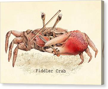 Fiddler Crab Canvas Print by Eric Fan