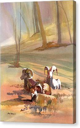 Field Day Canvas Print by Kris Parins