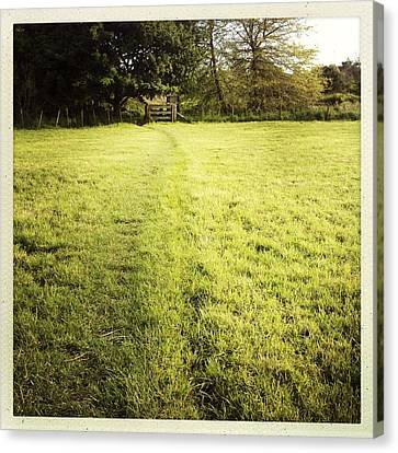 Field Canvas Print by Les Cunliffe