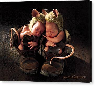 Field Mice Canvas Print by Anne Geddes