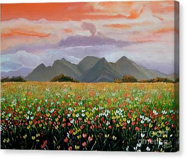 Field Of Flowers Canvas Print by Caroline Street