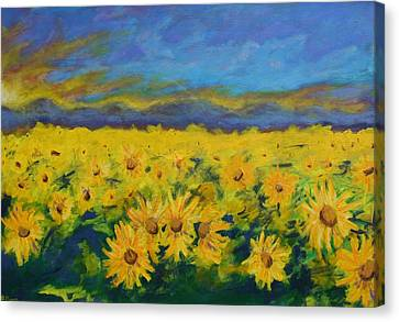 Field Of Sunflowers 2009 Canvas Print by Piotr Wolodkowicz