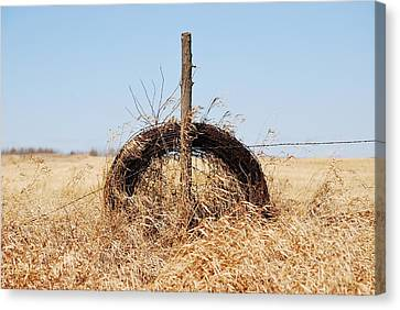 fields That Feed Canvas Print by JC Photography and Art