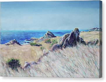 Fields With Rocks And Sea Canvas Print by Asha Carolyn Young