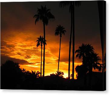 Fiery Sunset Canvas Print by Deb Halloran