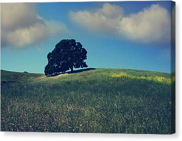 Find It In The Simple Things Canvas Print by Laurie Search