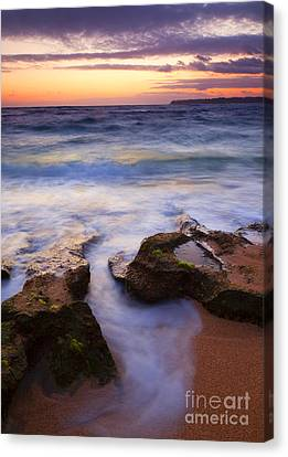 Finding The Cracks Canvas Print by Mike  Dawson