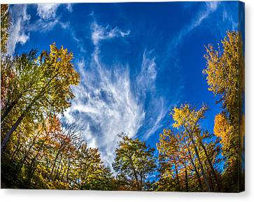 Finger Lakes Fall Day Canvas Print by Gary Fossaceca