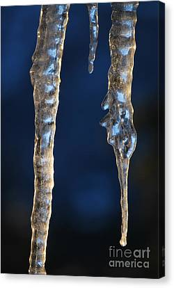Fire And Ice Canvas Print by Kenna Hillman