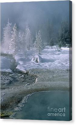 Fire And Ice - Yellowstone National Park Canvas Print by Sandra Bronstein