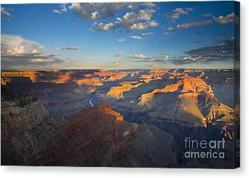 Colorado River Canvas Print featuring the photograph First Light On The Colorado by Mike  Dawson