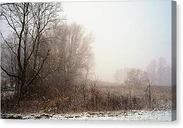 First Snow Of Winter Canvas Print by Dick Wood