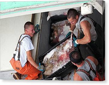 Fishermen Unloading Their Catch Canvas Print by Jim West