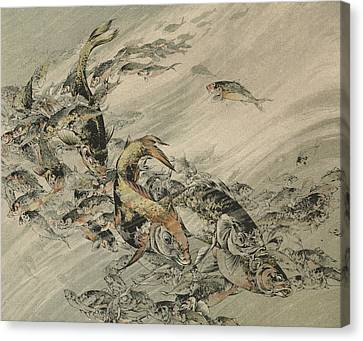 Fishes Canvas Print by Jules-Auguste Habert-Dys
