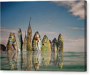 Fishhattan Canvas Print by Juan  Bosco