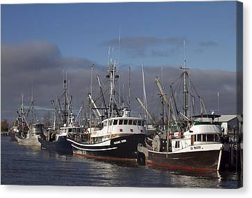 Fishing Boats Canvas Print by Elvira Butler