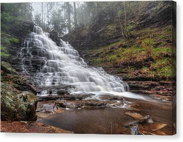 Fl Ricketts Waterfall Canvas Print by Lori Deiter