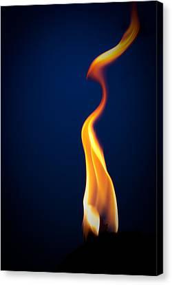 Flame Canvas Print by Darryl Dalton