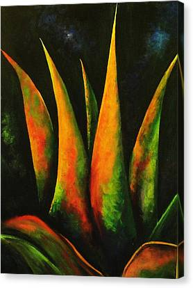 Flaming Aloe Canvas Print by Migdalia Bahamundi