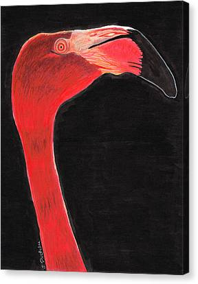 Flamingo Art By Sharon Cummings Canvas Print by Sharon Cummings