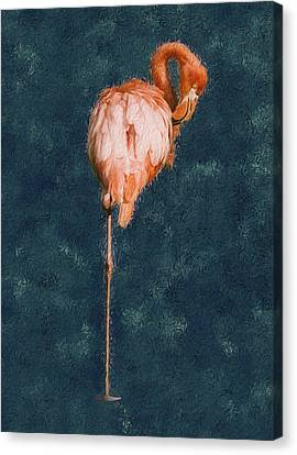 Flamingo - Happened At The Zoo Canvas Print by Jack Zulli