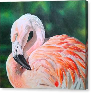 Flamingo Canvas Print by Obibi Art