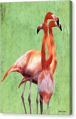 Flamingo Twist Canvas Print by Jeff Kolker