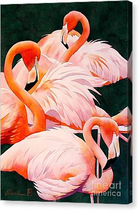 Flamingos Canvas Print by Robert Hooper