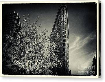 Flat Iron Building And A Magnolia Tree New York City Canvas Print by Sabine Jacobs