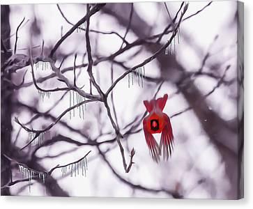 Flight Of A Winter Cardinal Canvas Print by Bill Tiepelman